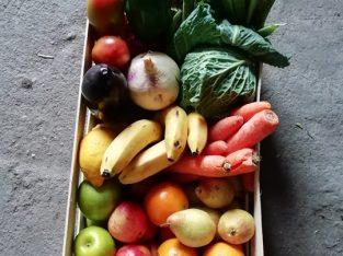 João Neto – Batatas, Legumes e Frutas