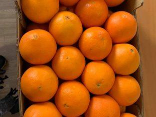 Frutas Álvaro Paço